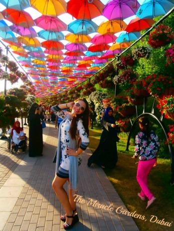 the-miracle-gardens-dubai-6