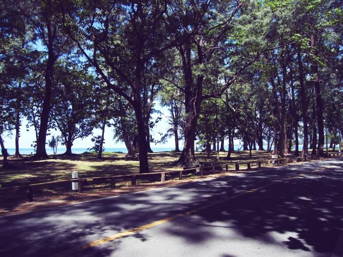 sirinatpark5.jpg
